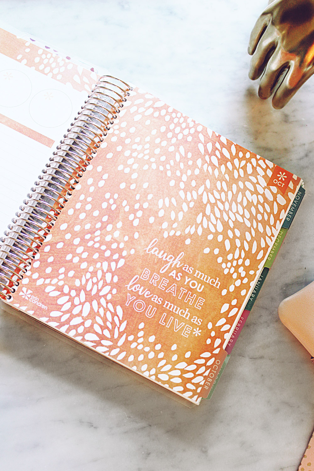 Style Of Sam Erin Condren Lifeplanner 2018 Review